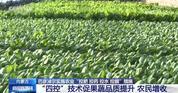 """内蒙古巴彦淖尔实施农业""""四控""""技术 助力农业增效、农民增收"""